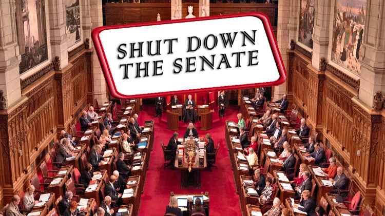 Shut Down the Senate Campaign